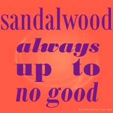 schmidtism_sandalwood